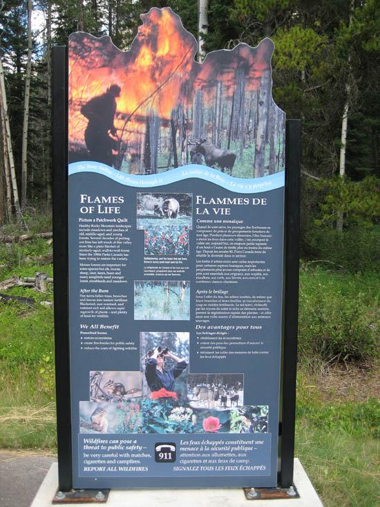 fire Alberta Bow Valley