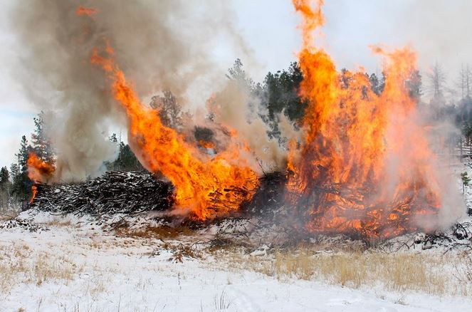Pile burning on the Black Hills National Forest