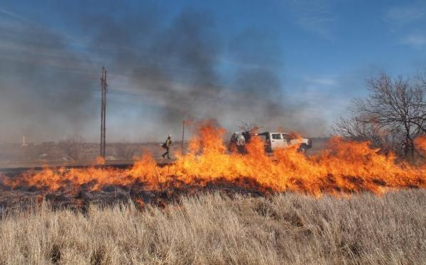 Lake Meredith prescribed fire