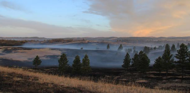 Cold Brook Fire 4-14-2015