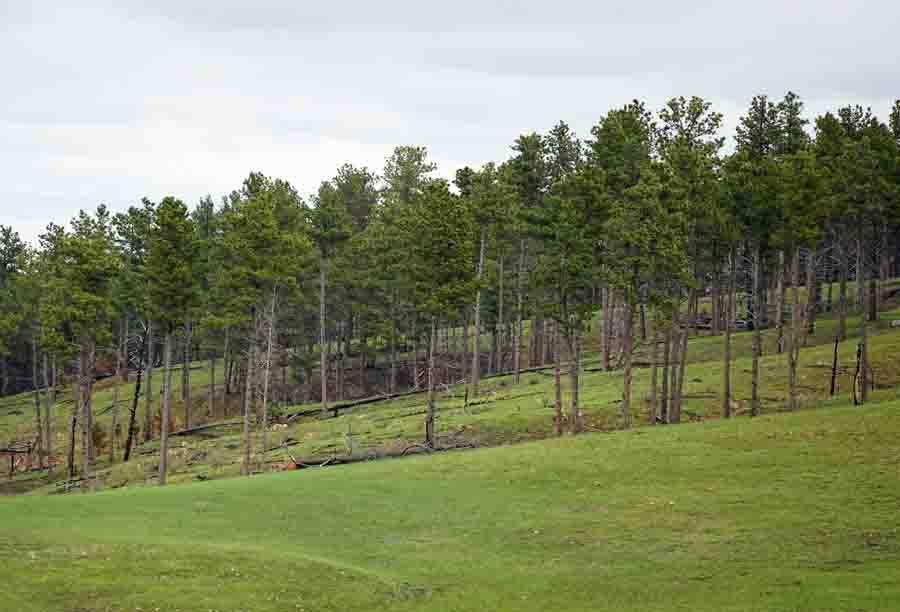 Wind Cave National Park prescribed fire