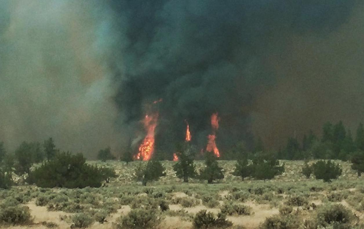Corner Creek Fire