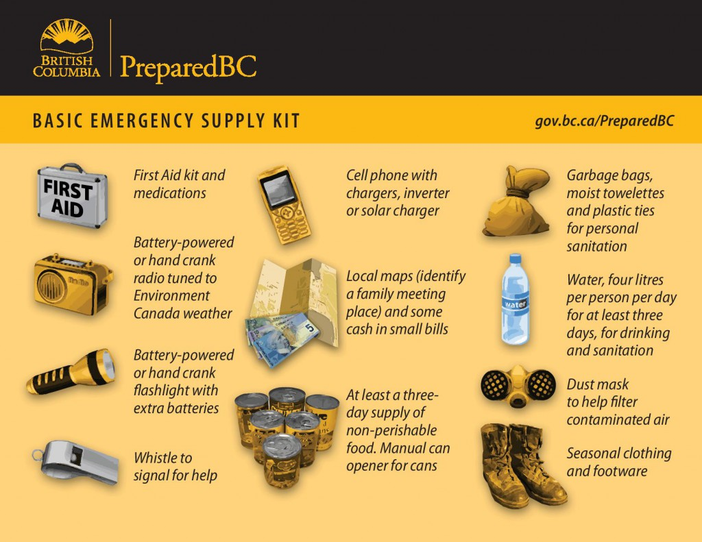 Earthquake Tsunami Kit