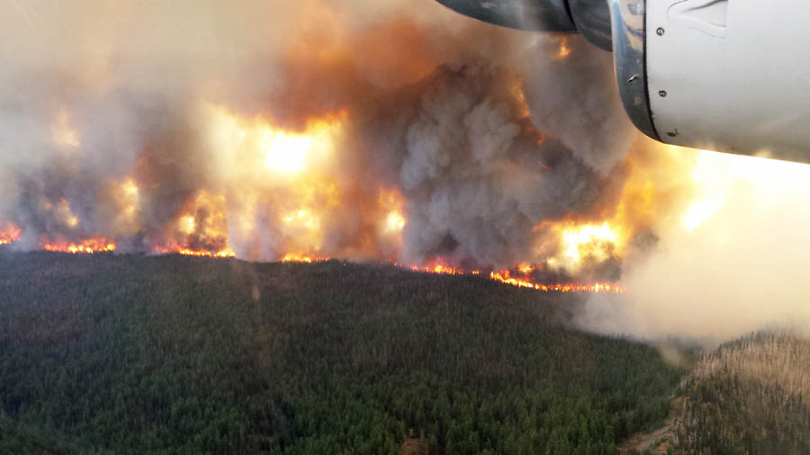 cougar creek fire archives