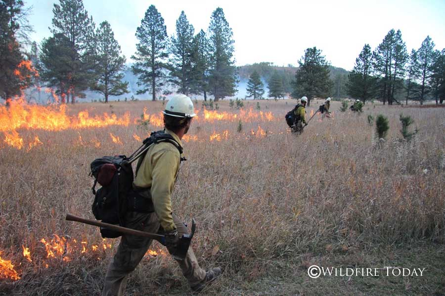 Norbeck prescribed fire,