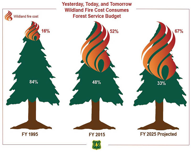 Wildfire costs 1995-2025