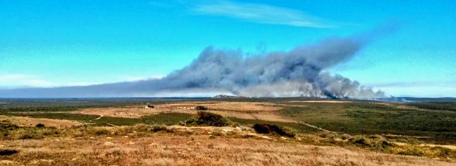 fire west coast national park south africa