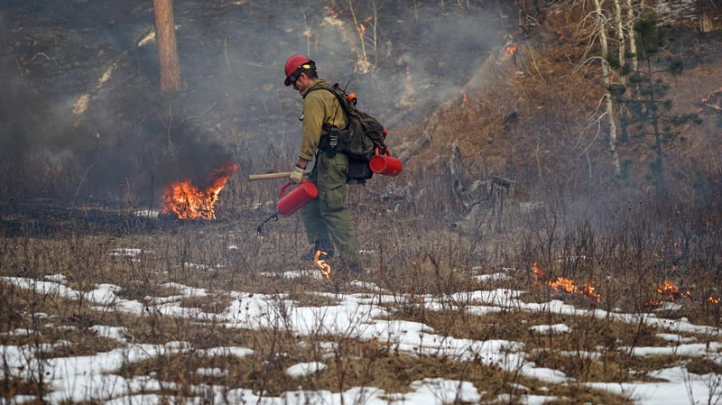 Whaley prescribed fire South Dakota