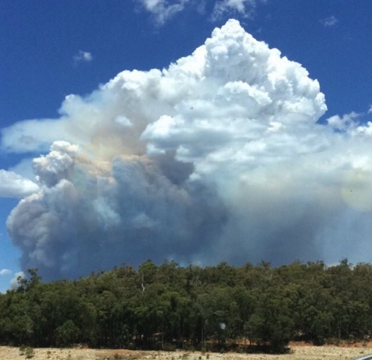 Waroona Fire Keeley_rg