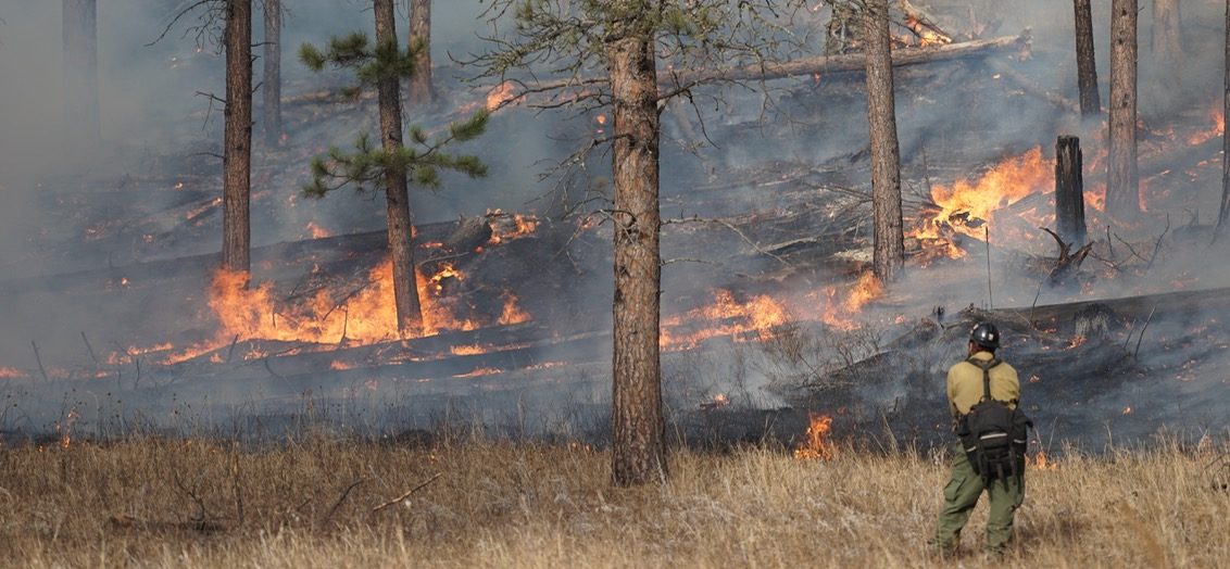 Washington lawmakers introduce bill to allow more prescribed fires