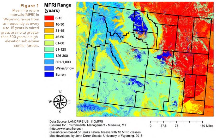 Wildland fire management in Wyoming