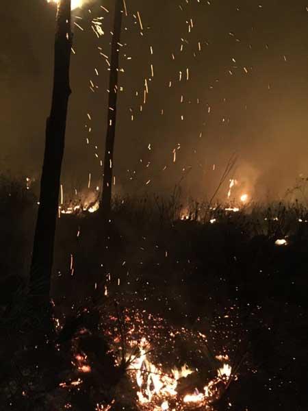 Martin Co Dave Grubich wildfire
