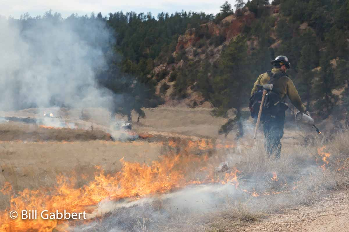 Pleasant Valley Prescribed Fire South Dakota