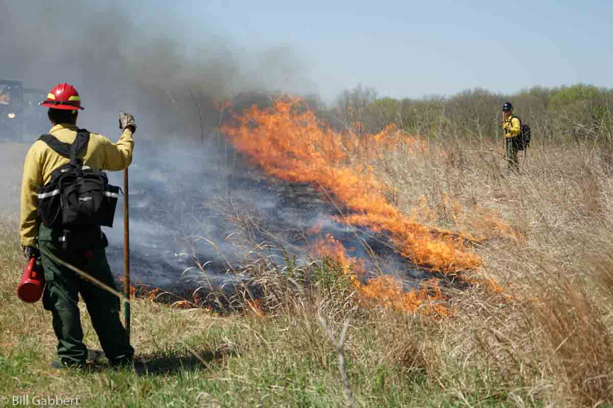 Homestead Rx fire
