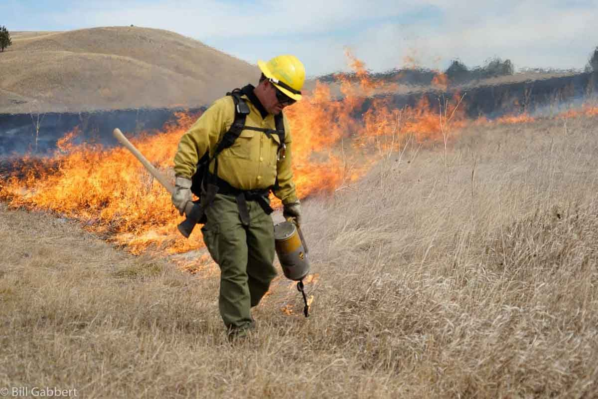Pleasant Valley Prescribed fire