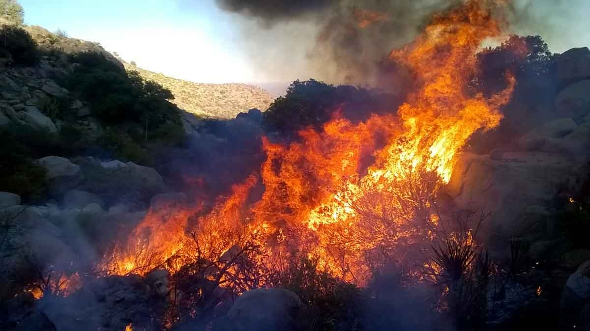 Prescribed fire at Ft. Bliss in New Mexico
