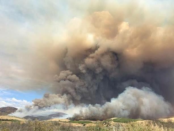 Metz Fire