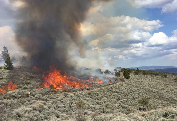 Monument Peak prescribed fire