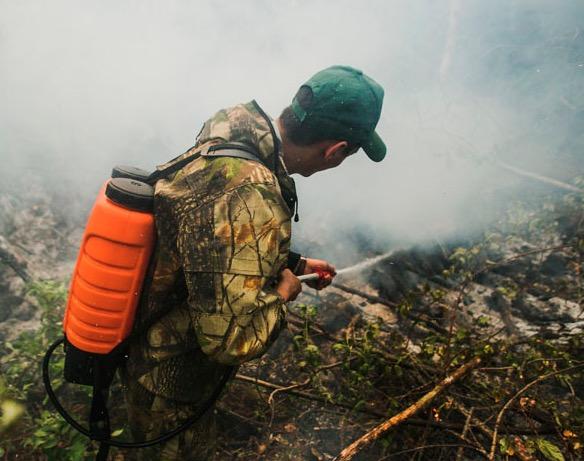 Siberia fire