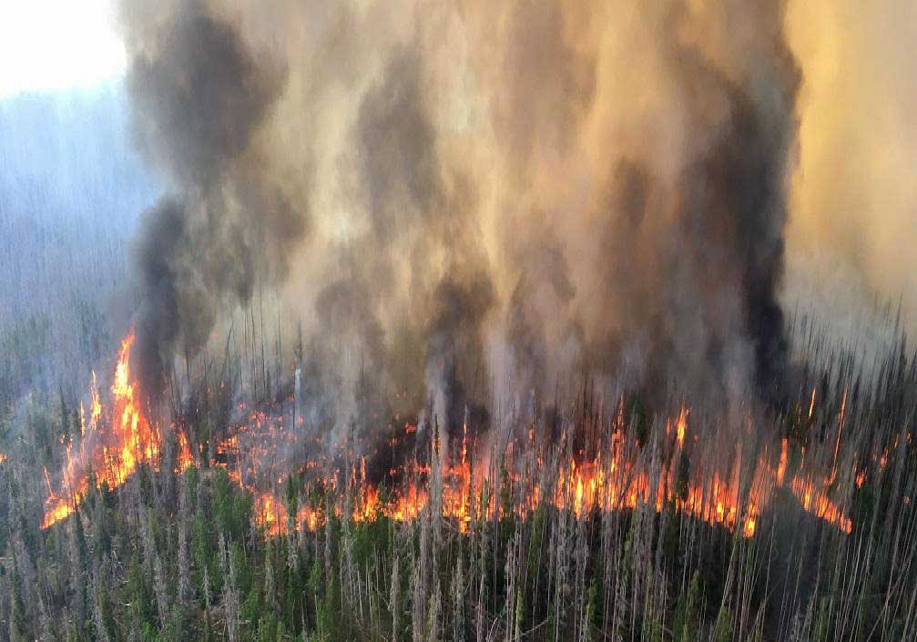 Colorado: Beaver Creek Fire