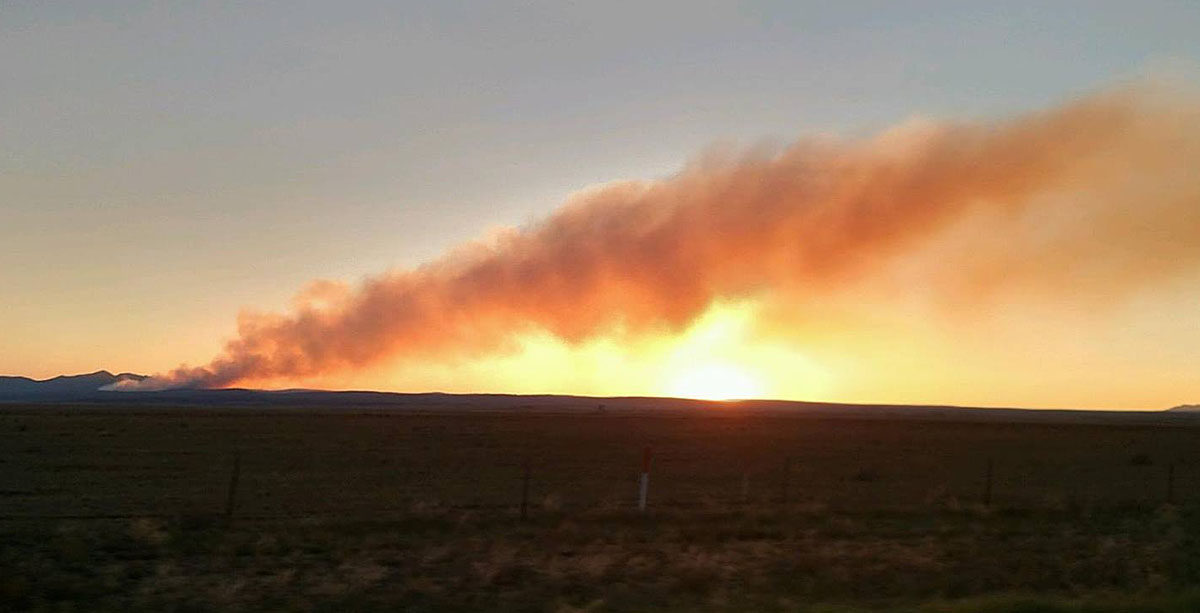 Wildfire activity in Arizona and New Mexico