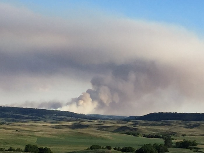 Douglas Fire