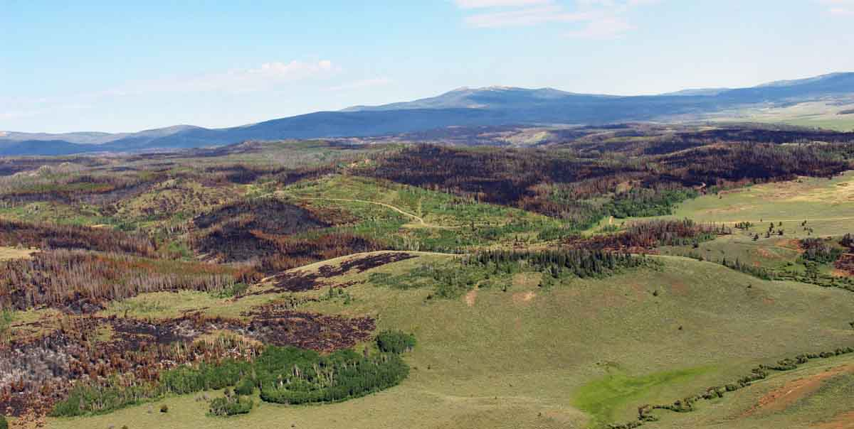 Beaver Creek Fire intensity