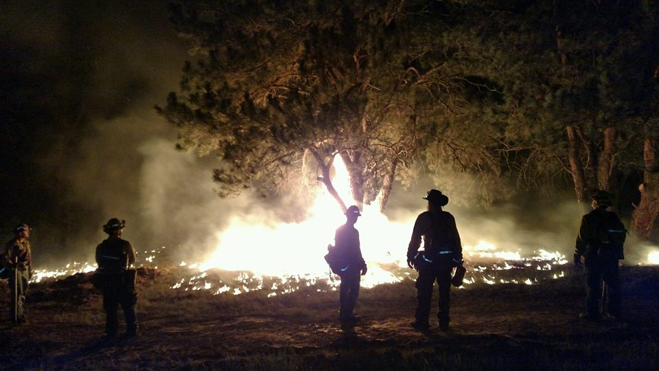 Browning Fire