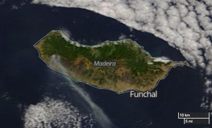 Madeira fires August 12, 2016