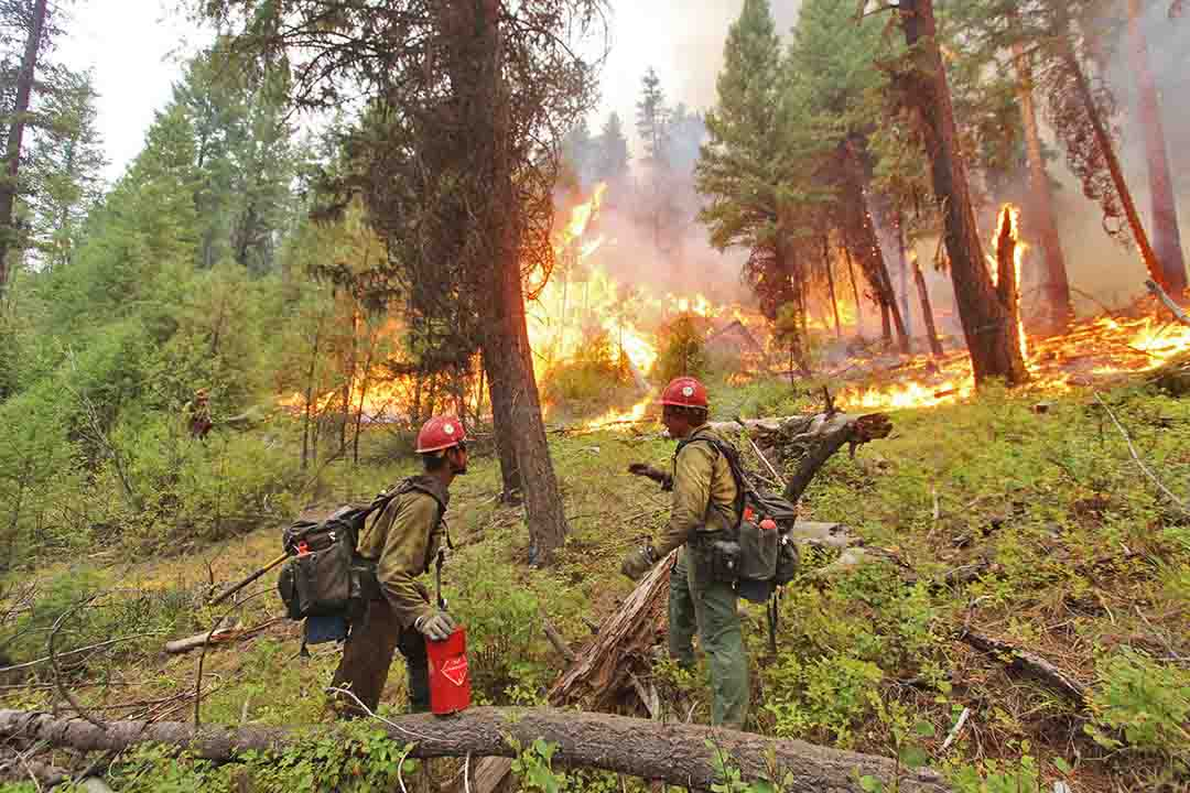 Pioneer Fire spreads north across Highway 21 near Lowman, Idaho