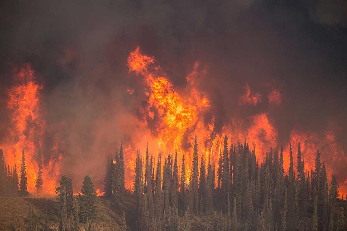 USFS Regional Fire Director describes the management of ...