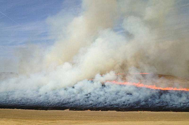 agricultural burning smoke