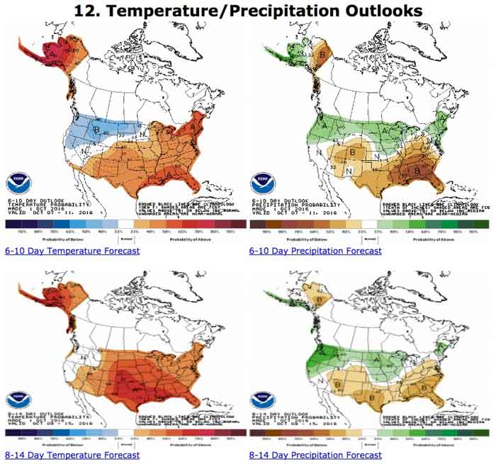 precipitation temperature outlook