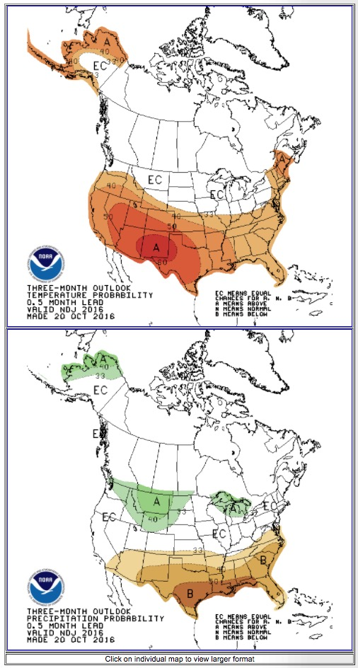 90-day-outlook