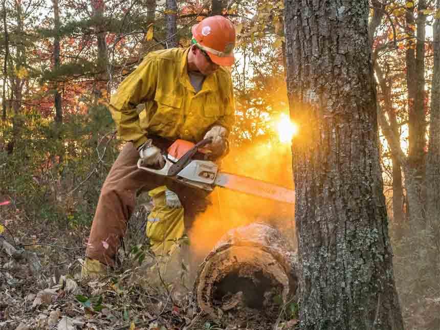 Chestnut Knob Fire