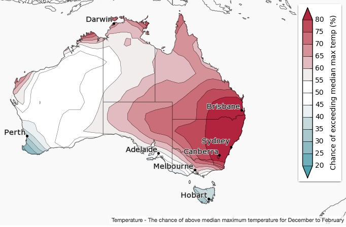 Amid predictions of an unusually warm and dry summer, temperatures in Sydney soar to highest in 11 years