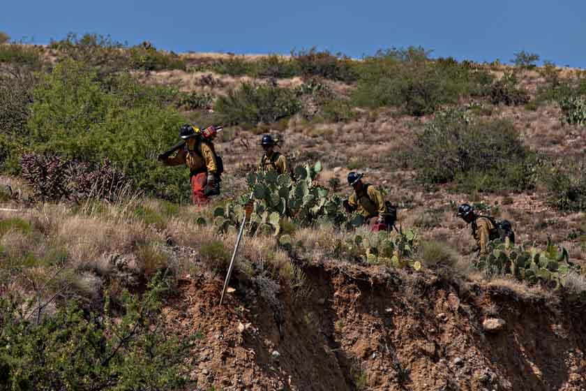 Pinal Fire Arizona Globe