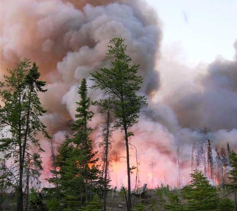 Ham Lake Fire 2007 Minnesota