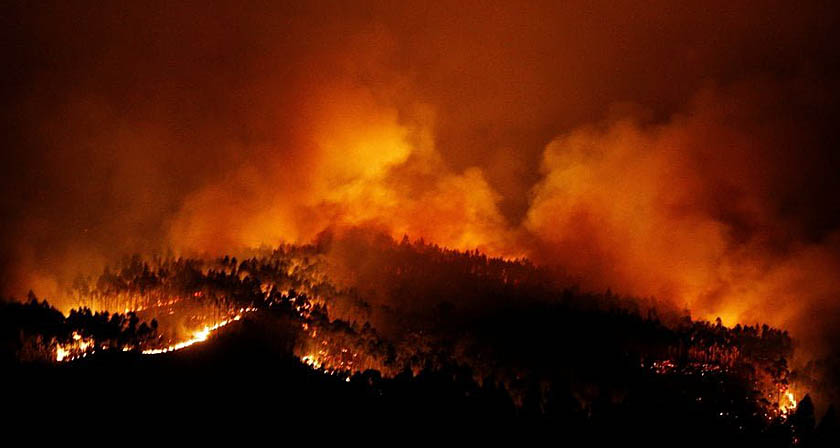 62 die in forest fire still raging in Portugal