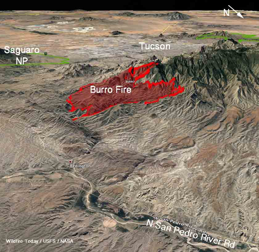 Burro fire near Tucson closes road to Mt. Lemmon