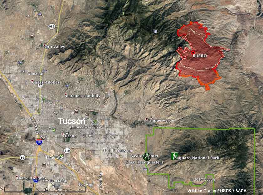 Burro Fire near Tucson grows to over 19,000 acres