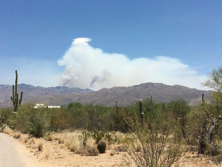 Burro Fire Mt Lemmon Tucson Arizona June 2, 2017