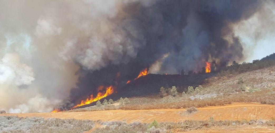 Detwiler Fire awakens, burns another 100 acres