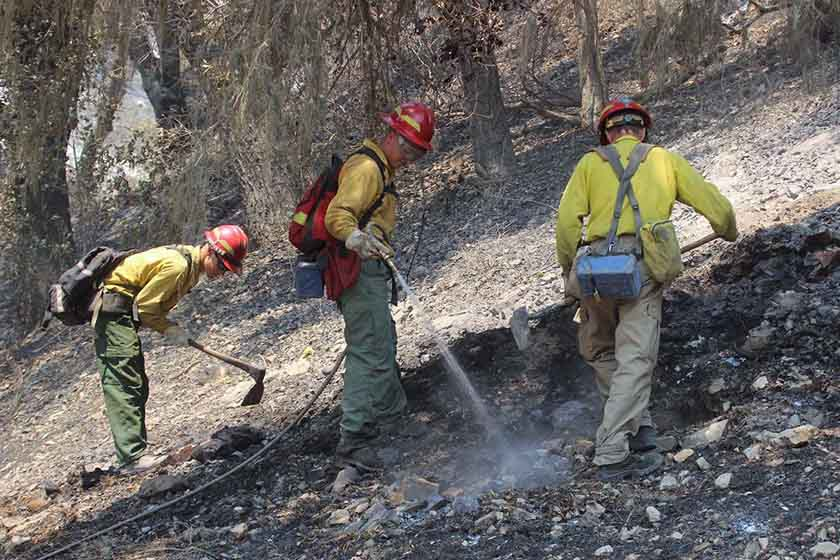 Engine Crew from Rogue River Whittier Fire