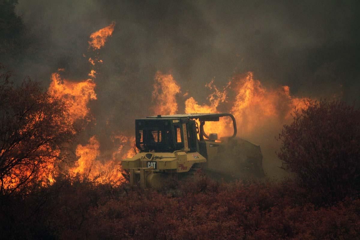 Rose Fire Lake Elsinore CA