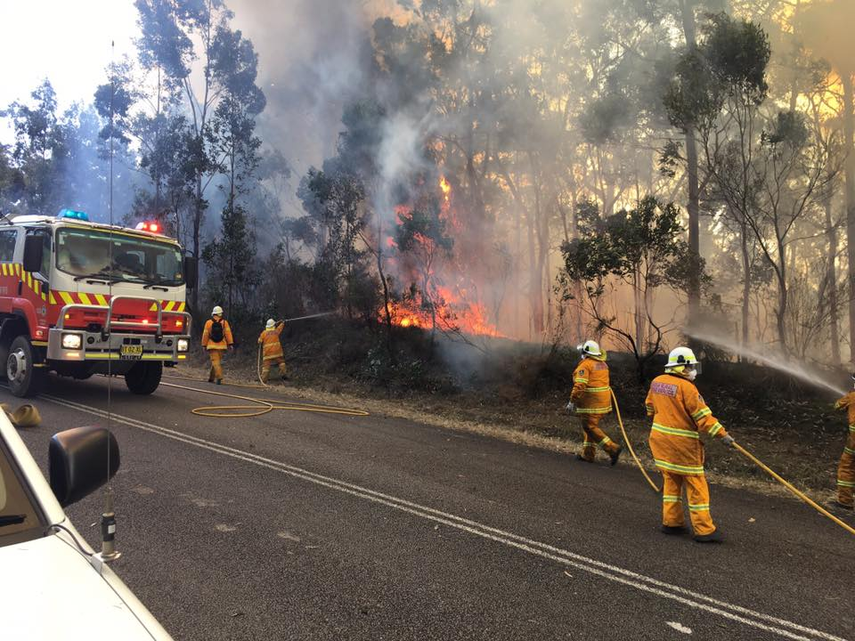 NSW bush fire