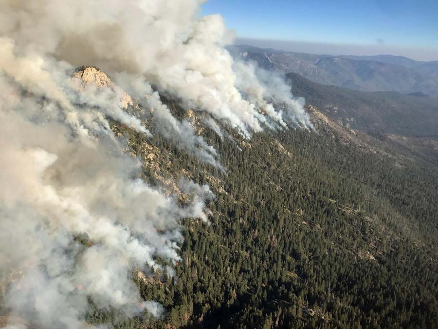 Lion Fire update, October 6, 2017