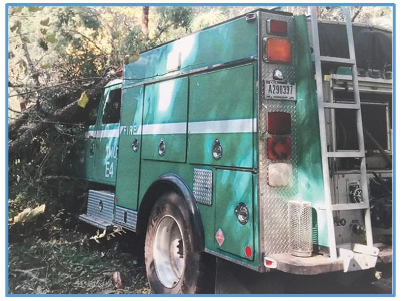 Tree falls on engine Nuns Fire