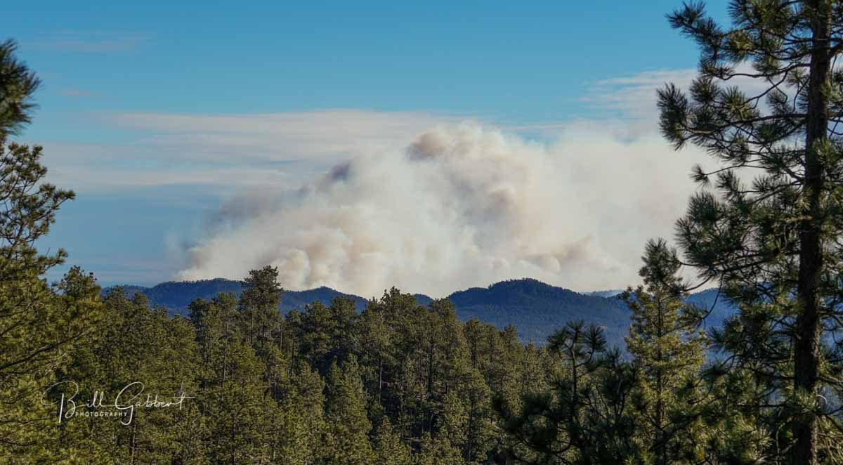 Wildfire grows in Custer State Park in South Dakota