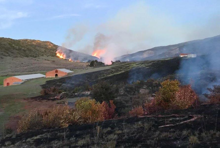 Santa Cruz Island Fire